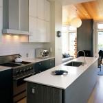 ремонт кухни в квартире с мойкой фото